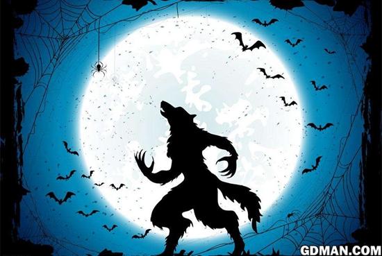 狼人杀实战经验分享与解析